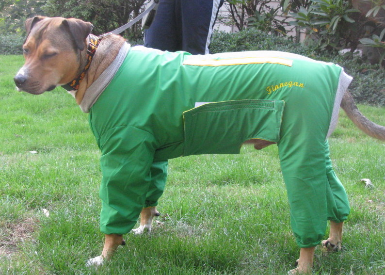 Fleece Snow Suits for Dogs http://tootlewear.webs.com/largebreeddogsnowsuit.htm